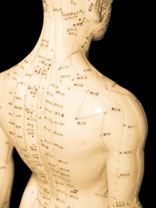 3D model of acupuncture points